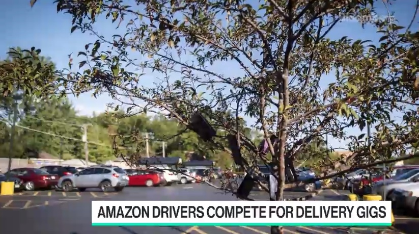 Amazon Drivers Are Hanging Smartphones in Trees to Get More Work